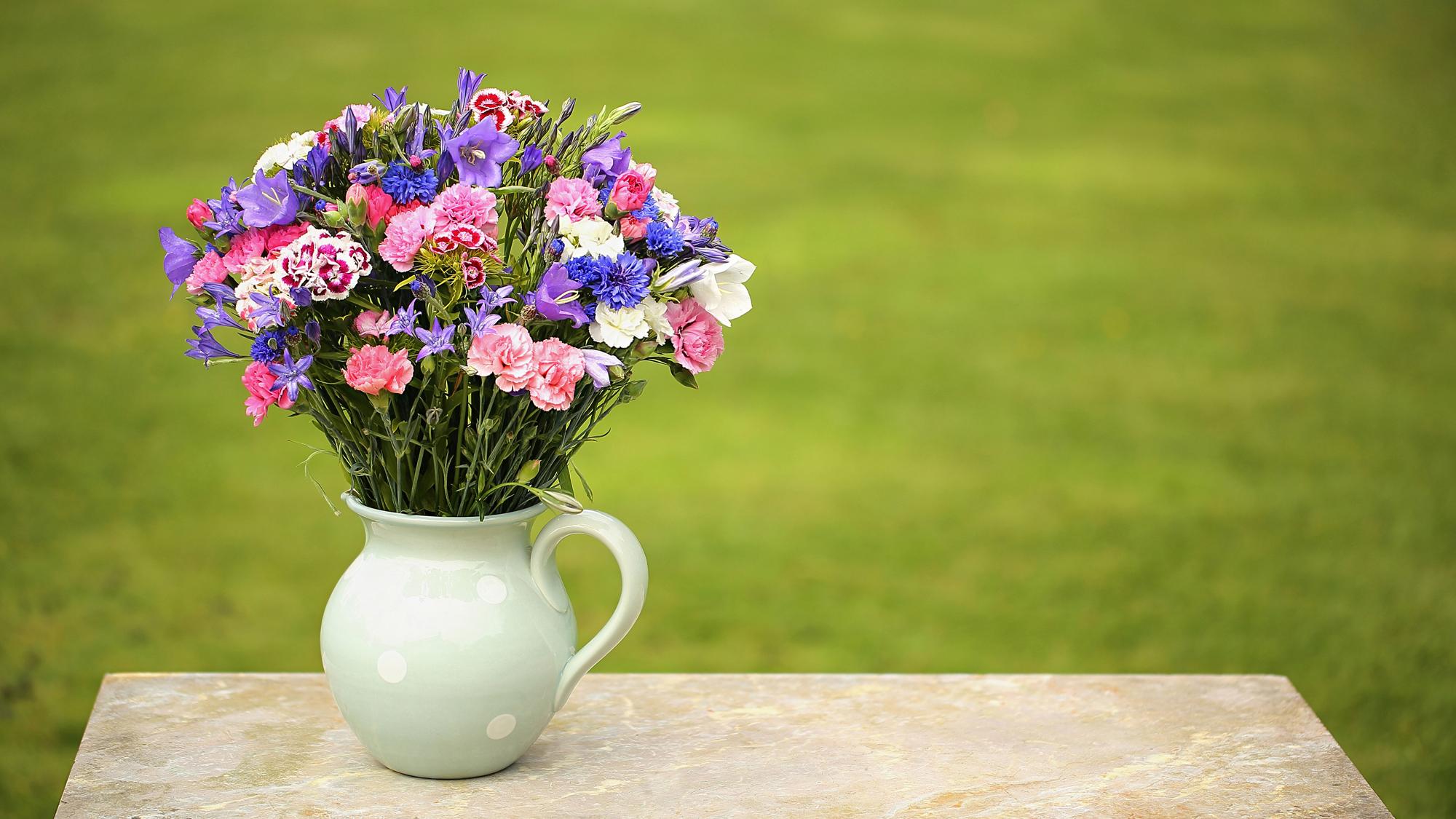 Welcome cornish blooms welcome izmirmasajfo