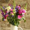 Summer mixed cornish flower bunch