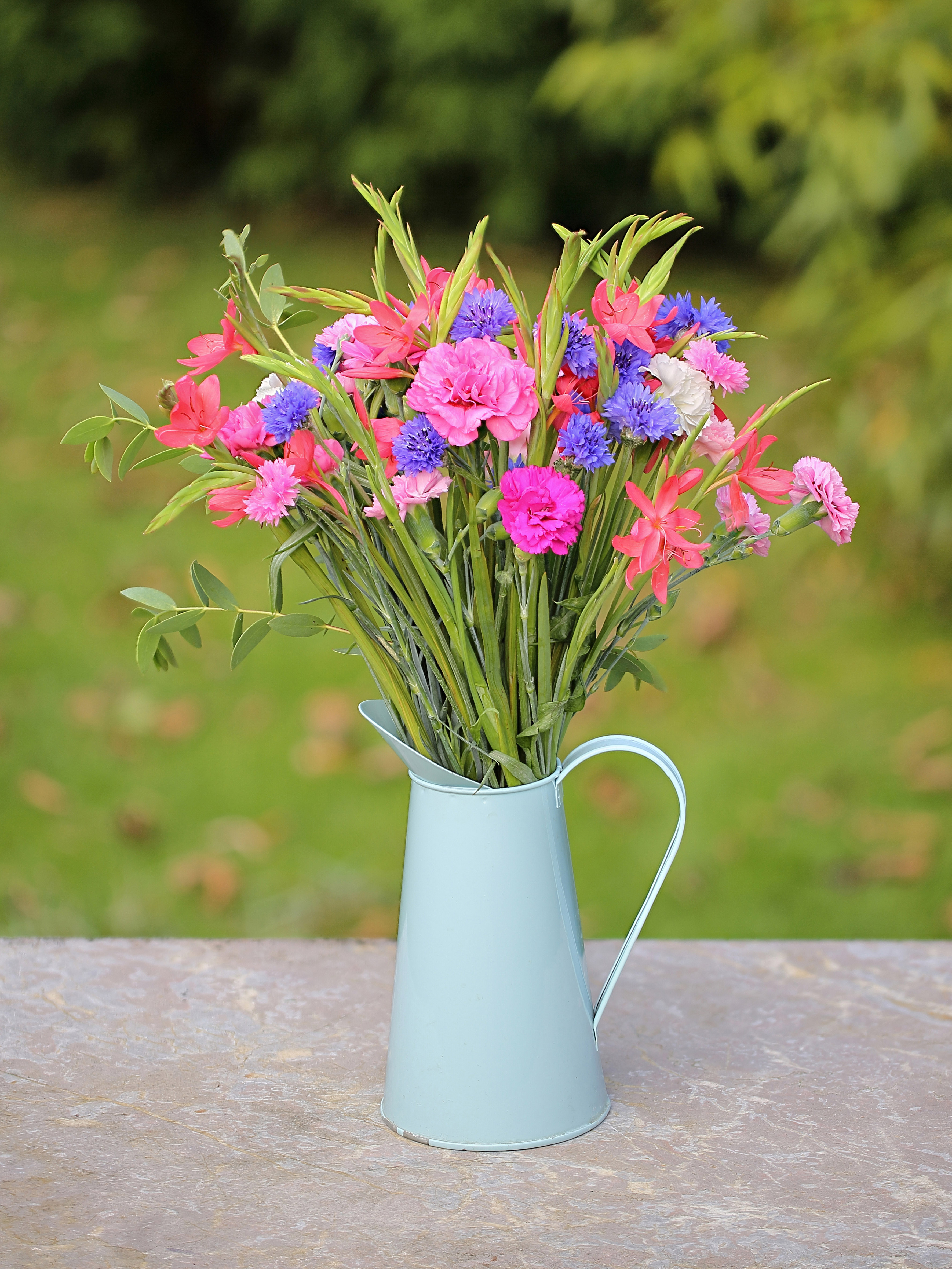 Flower subscription cornish blooms cornish pinks kaffirs cornflower izmirmasajfo
