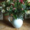 Alstroemeria in a jug
