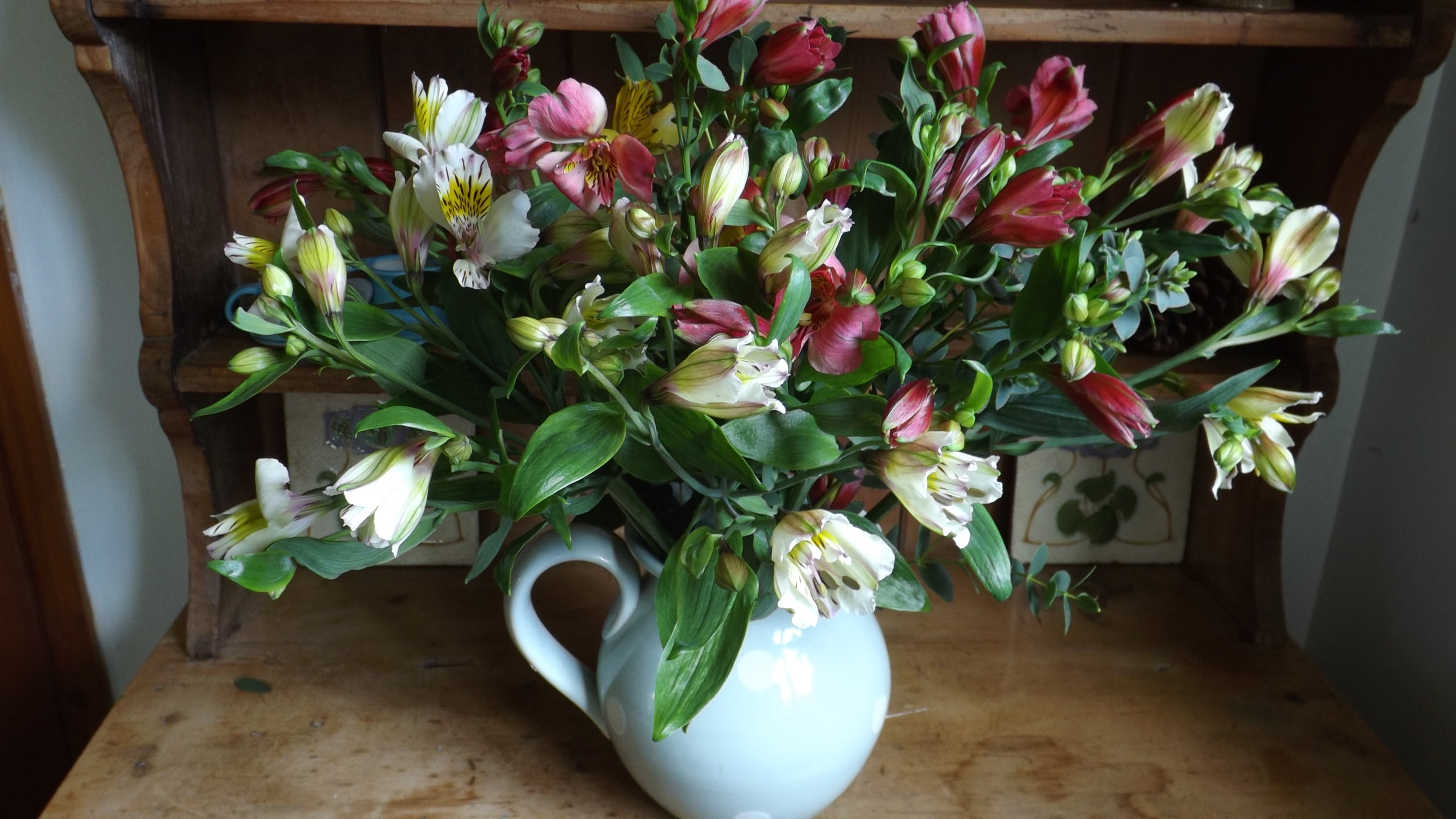 Cornish Alstroemeria Cornish Blooms